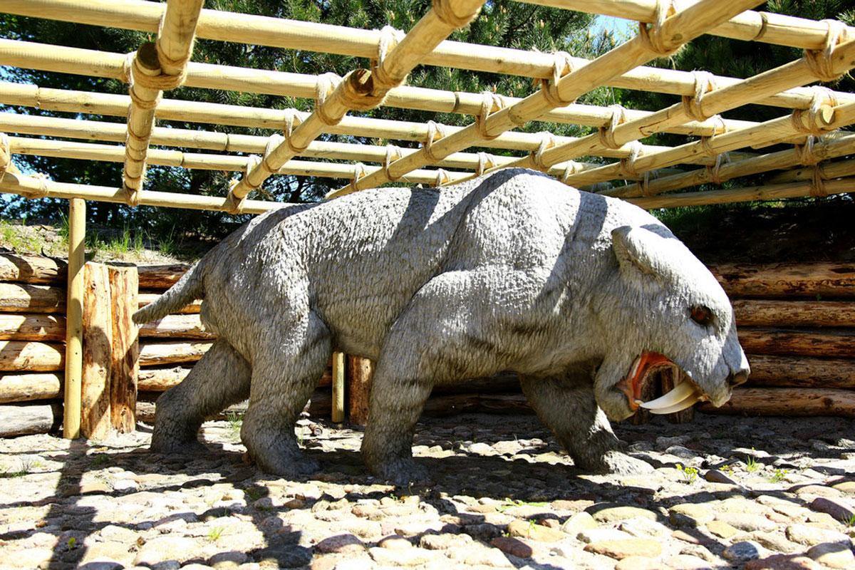 Dino Park Łeba private Trip from Gdańsk, Sopot, Gdynia