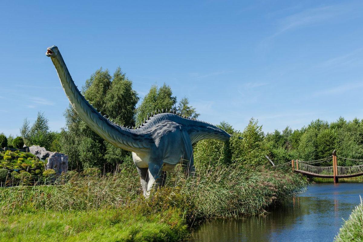 taxi airport Gdansk transfers to Dino Park Łeba