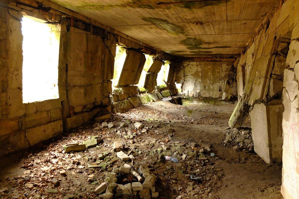 Ruiny Wilczy Szaniec prywatna wycieczka z lotnisko Gdańsk